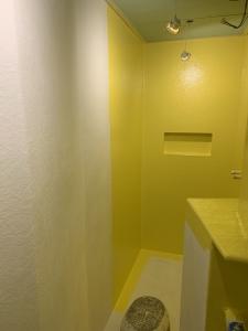polyester gelcoat topcoat badkamer