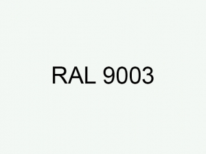 ral9003